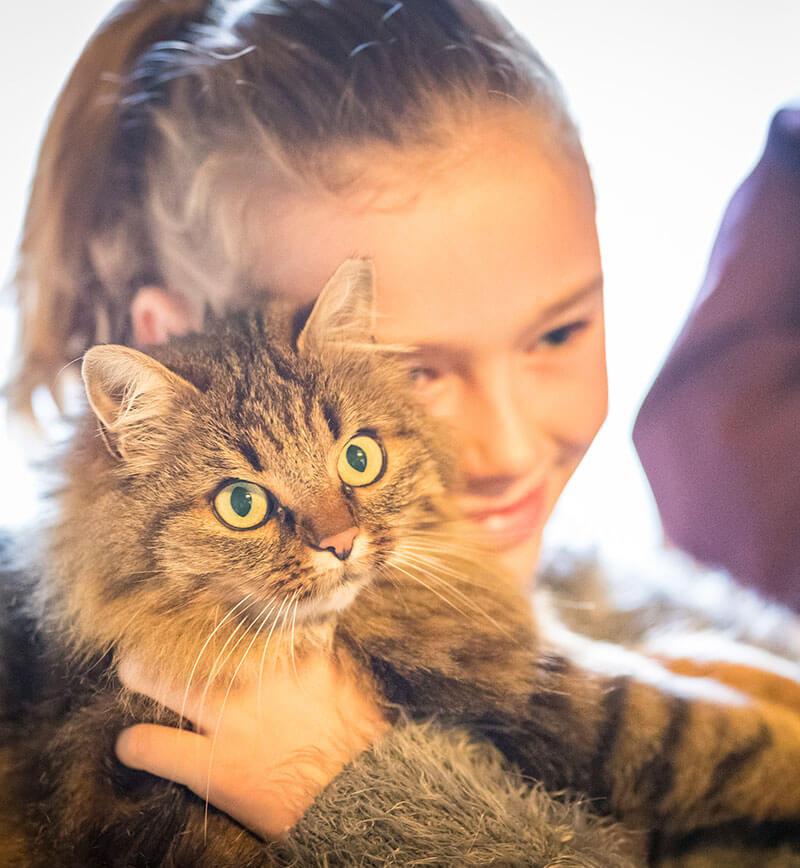 Du Bist Da Zu Hause Wo Deine Katze Wohnt: Familie Pfeifhofer - Reidenhof